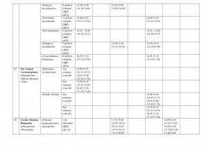 распис-общее-1 пол-дие 17-18г-11